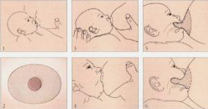 як правильно годувати грудьми